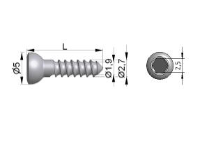 Wkręt do kości drobnych Ø2,7/1,9mm